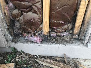 Termite damage - before